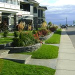 planter beds for a commercial town home project in Peachland