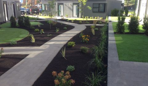 paver walkway with mulch bed