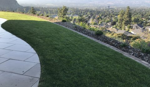 landscape edging